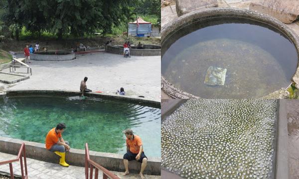 hot spring (14)