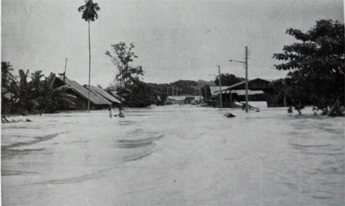 马来西亚11