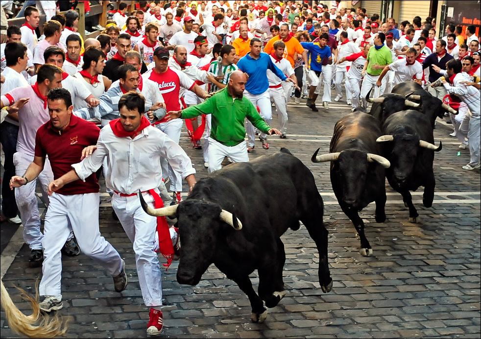 6 the bull run